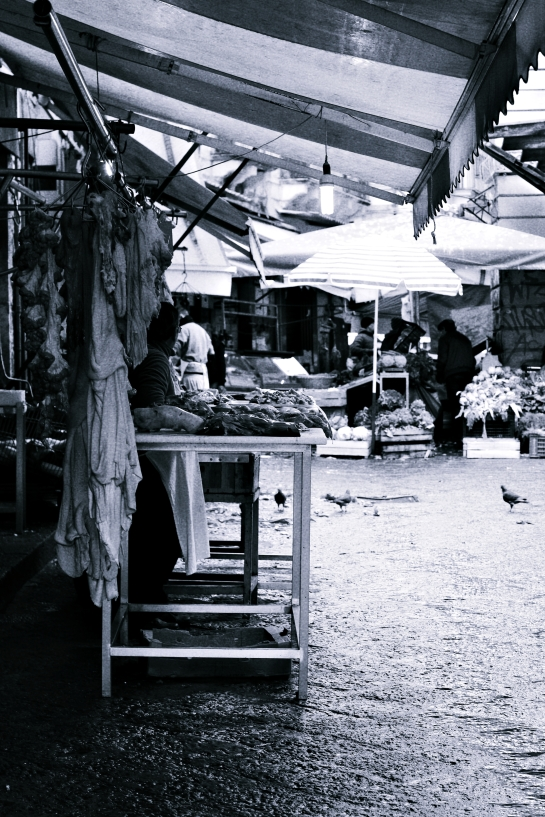 Catane marché poisson